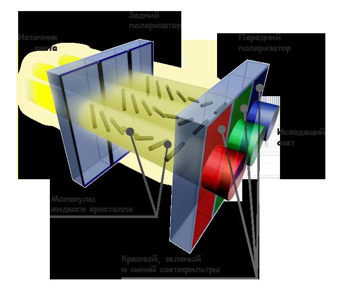 Схема экрана на жидких кристаллах
