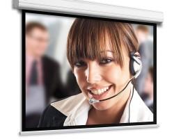 Adeo Professional Моторизованный/ручной проекционный экран с шириной полотна 143 – 393 см.