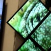 Userful объявила о партнерстве с BTX Technologies в сегменте бюджетных видеостен