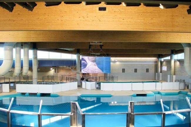 725-киллограммовой конструкция 4х4 видеостены высокой четкости, состоящая из 16 NEC плоскопанельных LCD-дисплеев, была установлена над огромным бассейном с соленой водой с гавайскими тюленями-монахами